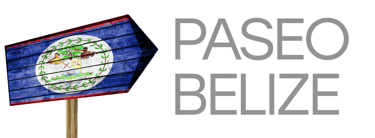 Paseo Belize | Travel Technology Partner